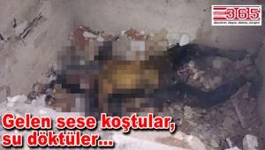 Bağcılar'da metruk binada yanmış erkek cesedi bulundu
