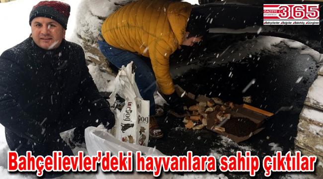 CHP'liler sokak hayvanlarını unutmadı...