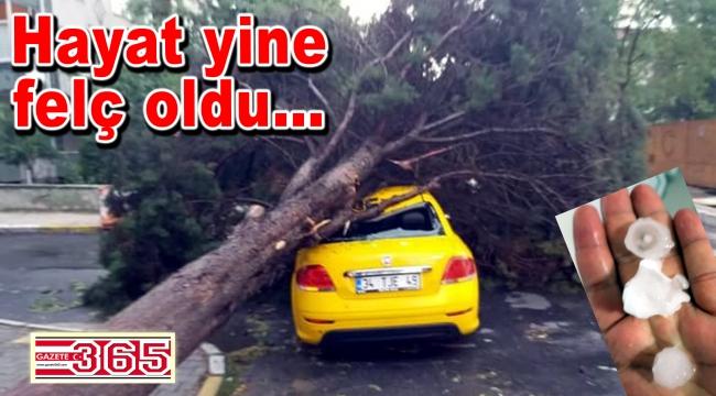 Ev ve iş yerlerine su bastı, ağaçlar devrildi…