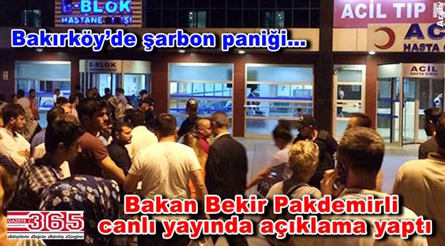 İstanbul'da 22 kişi hastanelere başvurdu: 4 kişide şarbon ihtimali!