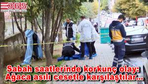 Bahçelievler'de şok olay! Ağaca asılı erkek cesedi bulundu