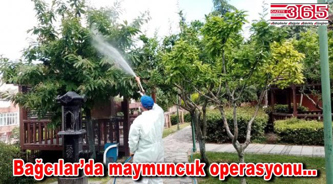 Bağcılar Belediyesi'nden maymuncuk operasyonu